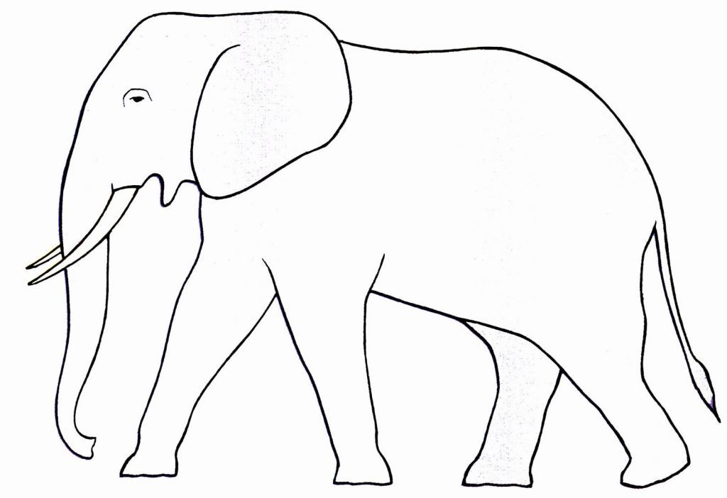 Dessin l phant simple - Comment dessiner un elephant facilement ...